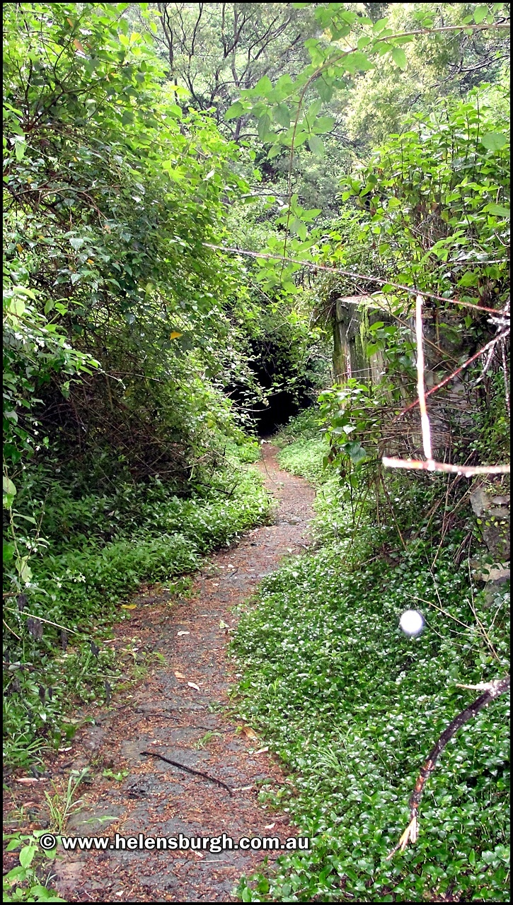 The long and winding overgrown track to the Otford Tunnels northern portal.