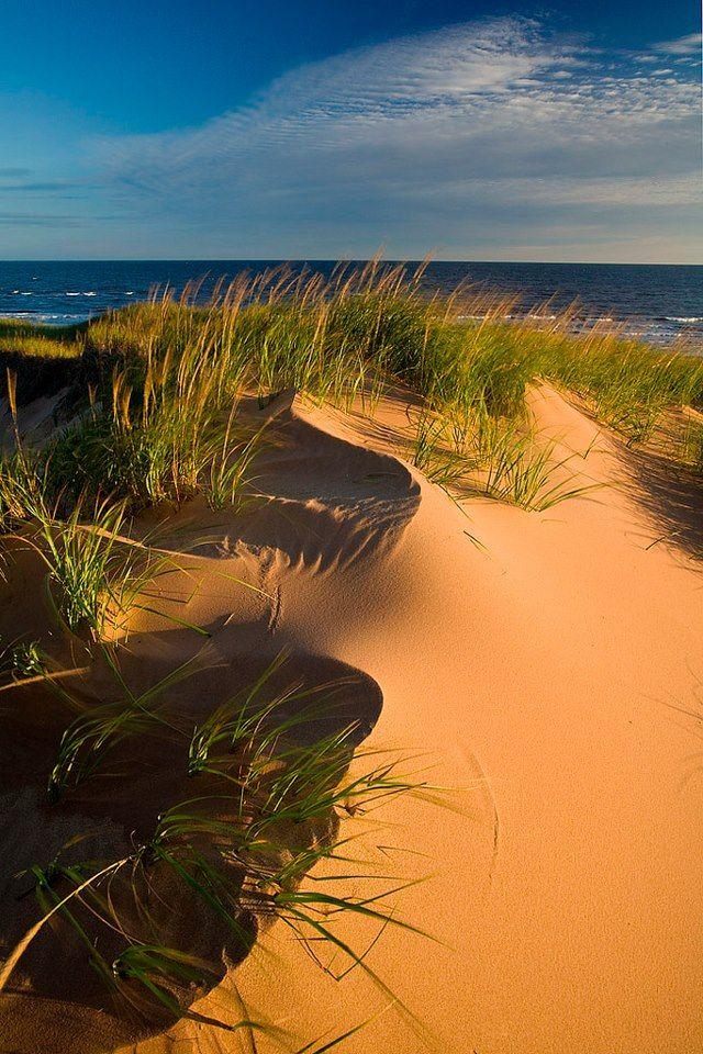 Incredible dunes in the Brackley portion of PEI National Park.