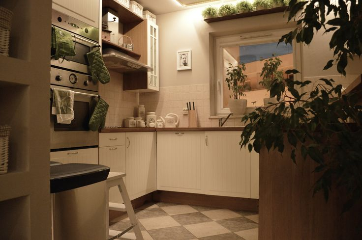 Kitchen with green plants above the window