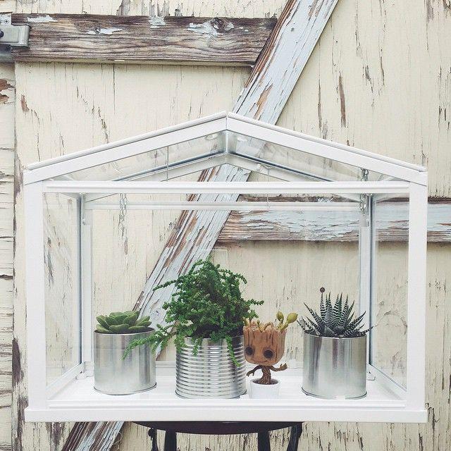 SOCKER Greenhouse From IKEA