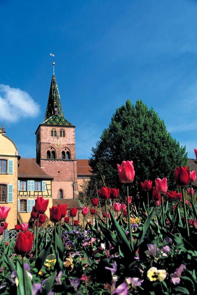 Et si on vous parlait d'Alsace un peu… Notre collaboratrice Jessica Ouellet vous raconte tout sur le pays des cigognes :)