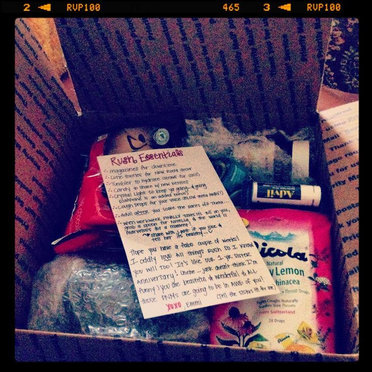 The Endless Diary of a Sorority Girl : Dear Diary, How to Make a Recruitment Survival Kit...