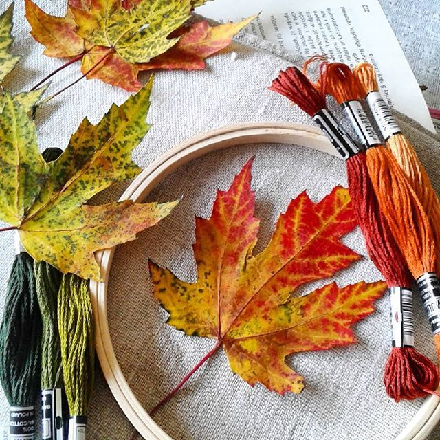 Najwyższy czas wziąć się do roboty.Przygotowania trwają,ale jeszcze się waham,co wyszyć...Chciałabym wszystko,ale to niemożliwe.Miłej niedzieli IG♡♡♡ #jesiennie🍁🍂 #jesień #len #haft #nici #mulina #koloryjesieni #miłejniedzieli #dzieńdobry #goodmorning #stich #embrodeiry #autumn #leafs #colors #haveagoodday #добрыйдень #вышиваю #нити #листия #доброгодня