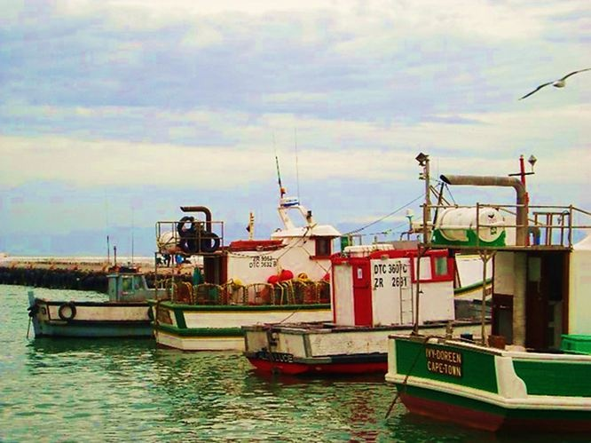 Kalk Bay harbour - Cape Town -(South Africa).