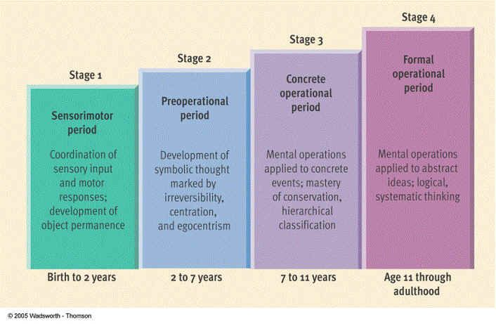 This is a chart showing the Piaget's four stages of cognitive development and at what age groups these cognitive developments occur.