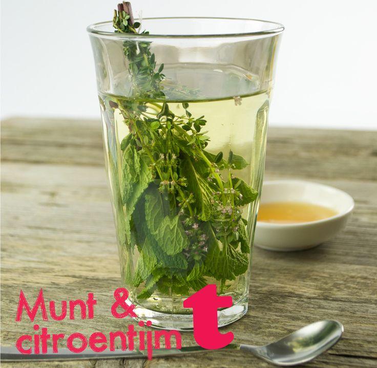Verse kruidenthee: de smaken munt en citroentijm versterken elkaar voor een lekker frisse en kruidige kop thee!