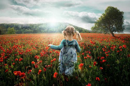 fields: Little Girls, Photos Ideas, Most Popular, Photos Manipulation, John Wilhelm, Mackenzie Child, Doll, Flower, Kid