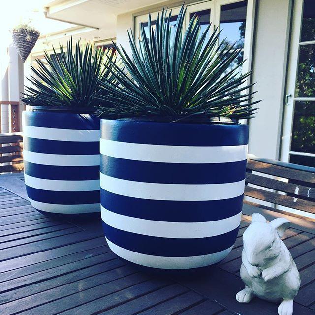 https://www.kismetartdesign.com/  454 Samford Rd, Gaythorne QLD 4051