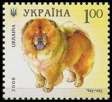 Чау-чау - сторожевая собака, применялась при охоте на крупного зверя, компаньон, одна из древнейших пород собак. По своему происхождению чау-чау относятся к группе шпицев, но существует предположение, что в них имеется примесь крови тибетского дога (мастифа)