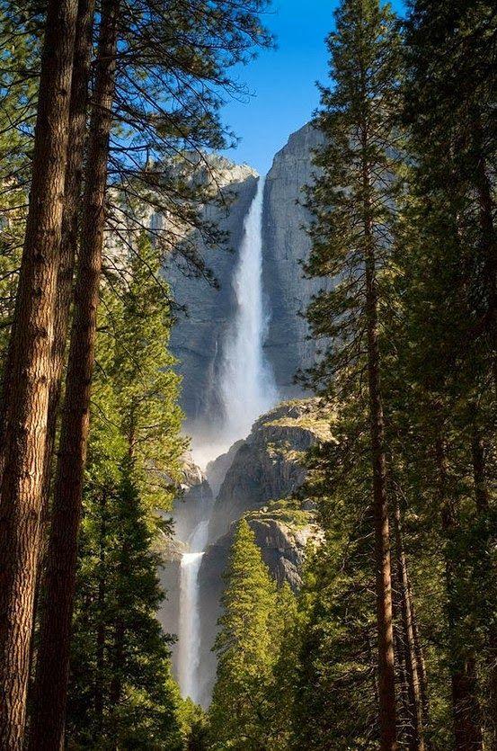 Yosemite National Park,United States.