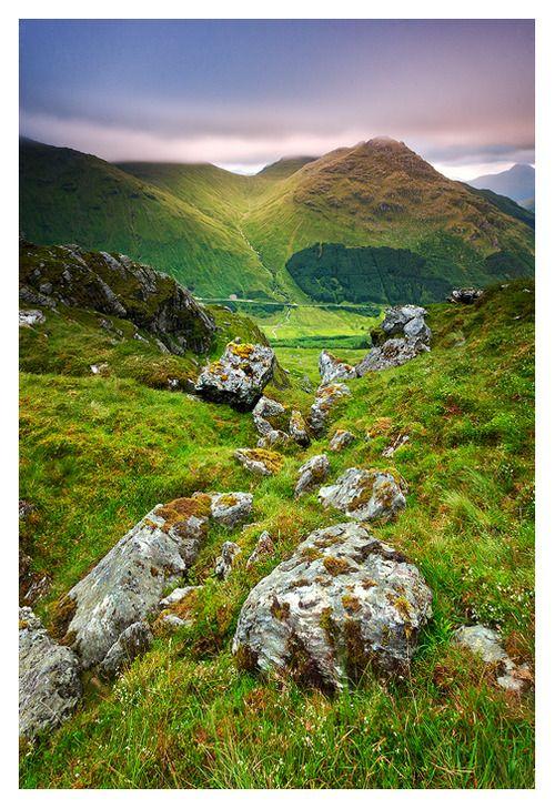 ✮ Summer Green, Ben Donich, Scotland