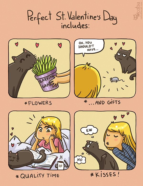 The one about Valentines | Catsu The Cat