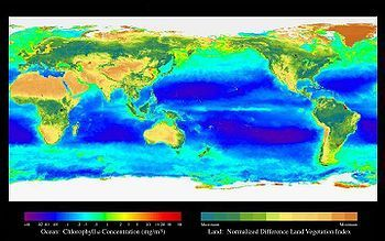El Niño (fenómeno meteorológico) - Wikipedia, la enciclopedia libre