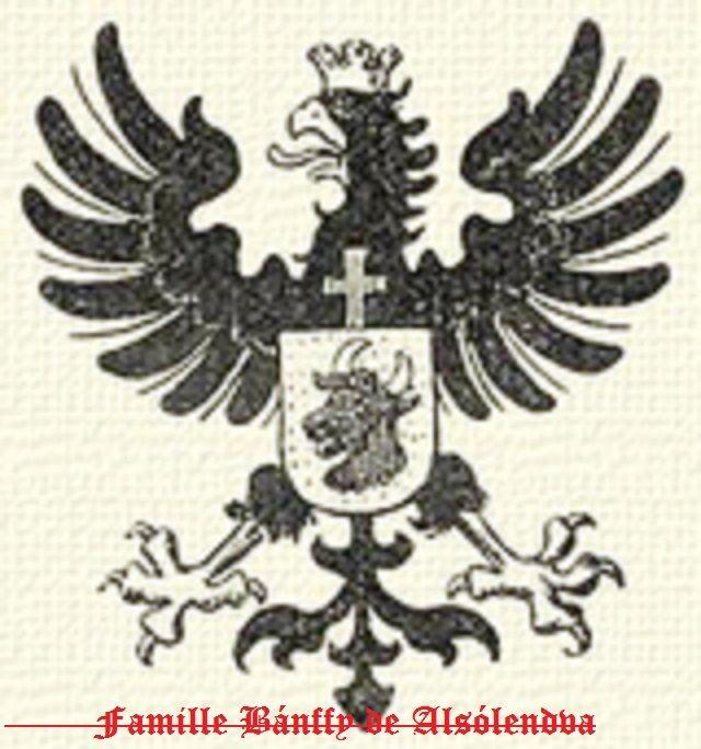 La famille est originaire du clan Buzád-Hahót. Elle remonte à un certain Hahót, mort en 1192, père d'un autre Hahót, comte (ispán) de Vas en 1238-39, décédé vers 1260 et fils d'un troisième Hahót. Un Arnold est palatin de Hongrie (nádor) en 1233-44. István Bánffy est mentionné dans des documents de 1291 en tant que Chancelier Royal. Il est comte-suprême de Varaždin en 1296. Miklós, comte-suprême de Zala au début du xive siècle. La famille donne également un ban de Croatie au xive et divers…