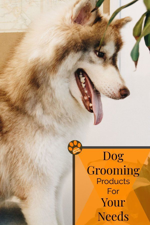 Dog Products Must Have Stuff For Dog Lovers Dogs Dog Lovers Pets