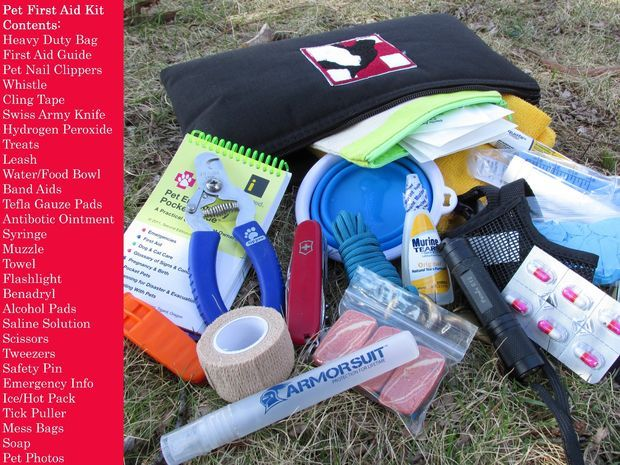 Picture of Philosophy - What should be in a pet first aid kit?