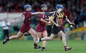Ann Dalton, Kilkenny Camogie, 2014 All Star