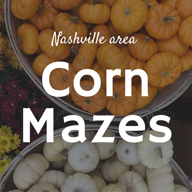Check out one or all of the Nashville corn mazes this fall. Check out our list of the surrounding areas corn mazes.