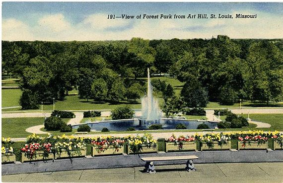 Forest Park from Art Hill St. Louis Missouri Vintage Postcard