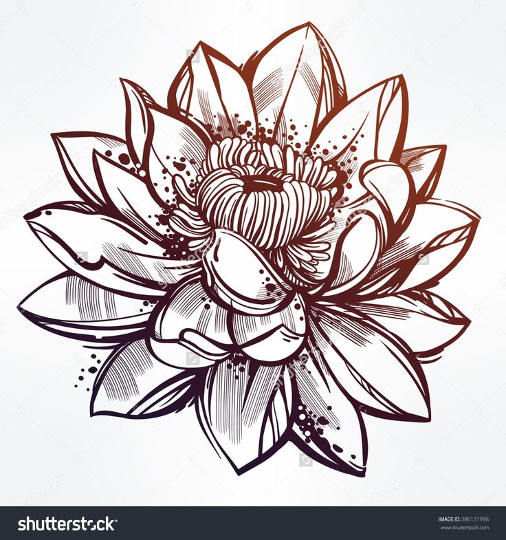 Line Art Aplic Flower Design : Best ideas about lotus flower drawings on pinterest