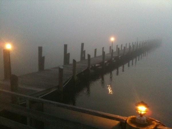 fogBeautiful Photos, Skipper Dock, Mood Boards, Boats House, Fog Rolls