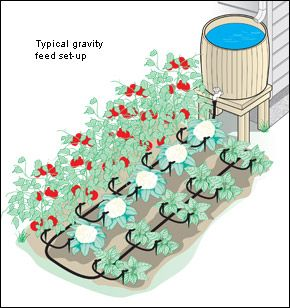 "Gravity feed irrigation system. For best operation there should be 3' or more of drop between the faucet and the drippers. (It will start to work with only 1' of drop, but not optimally.)  Includes 20 drip spikes with a leak rate of 1 gph, 50' of 1/2"" inside diameter (I.D.) header hose, 50' of 1/4"" I.D. feeder tube, a yellow hole punch, and connectors (1 compression end, 20 of the 1/4"" straight connectors and a hose/faucet connector) to make a system to water up to 20 plants."