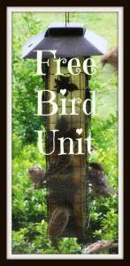 Preschool - Lower Elementary Bird Unit