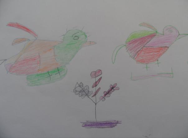 Ismatullah Delbar Khan, tento chalan má  17 rokov, názov obrázka - Vtáci
