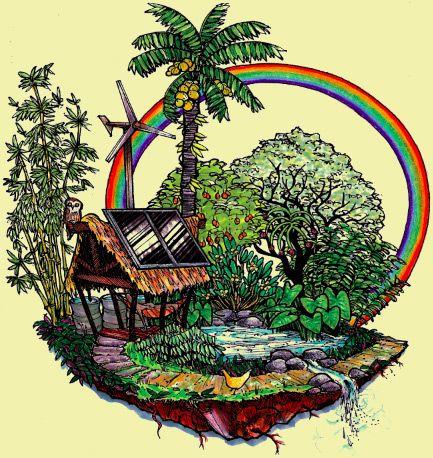 """Libro: Introduccion a la Permacultura por Bill Mollison,   En éste libro Bill Mollison explica la técnica por la cual se ganó un lugar en la historia del cuidado del medio ambiente: la permacultura,  """"una filosofía de trabajar con, y no contra la naturaleza"""". #elartedeserfelizalnatural"""