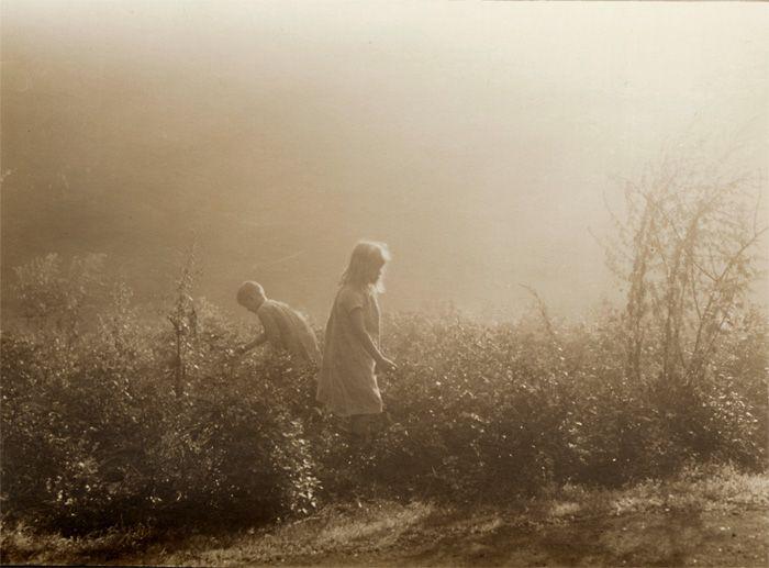 Picking Berries, 1920s, Leonard Misonne. Belgian (1870-1943)