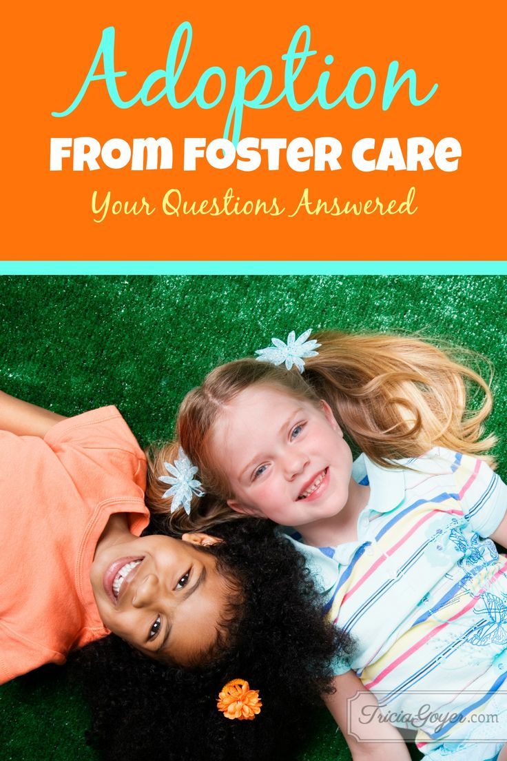 Foster care foster families essay