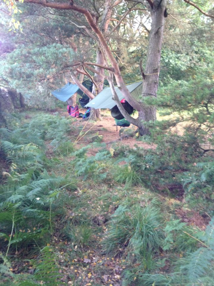 This was a hammock camp at black hills campsite near bingley