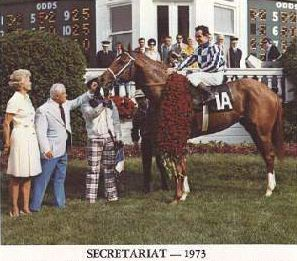 Secretariat....he was a FREAK & I am beyond thrilled to have a piece of this legend in my barn.