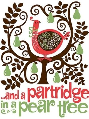...and a partridge in a pear tree by marci