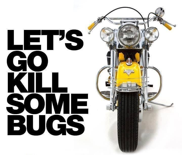 Best Riding Images On Pinterest Harley Davidson Branches And - Stickers for motorcycles harley davidsonsbest harley davidson images on pinterest