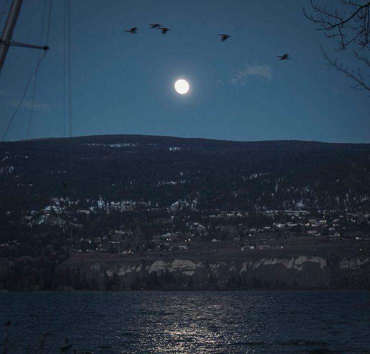 Moon over Naramata... waiting in the sky.