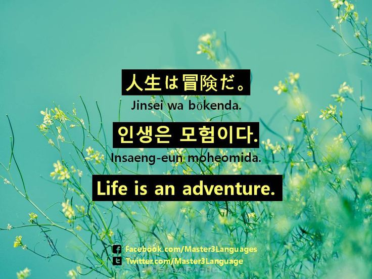 Life Quote In Korean And Japanese