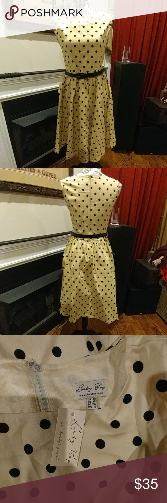 NWT Lindy Bop Mocha Polka Dot Audrey Swing Dress UK 10/US 6. True to size. Pinup, retro, tea dress, party dress, vintage style, rockabilly. Functional pockets! Modcloth Dresses Midi