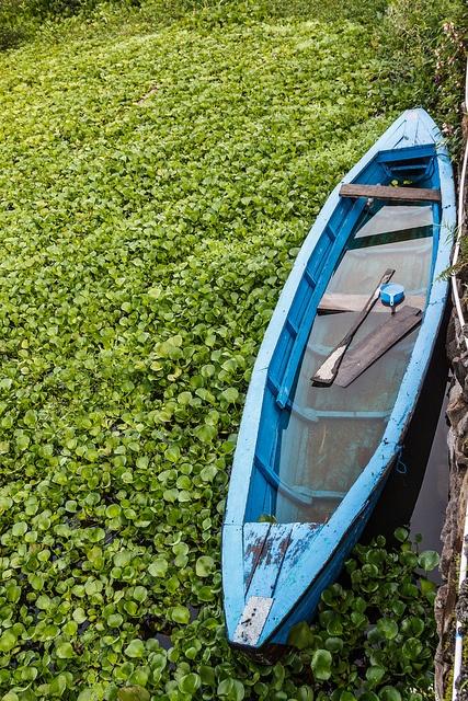 Just a quick boat shot at Tabo Cottages at Lake Toba, Samosir Island, North Sumatra, Indonesia. - Alexander Ipfelkofer
