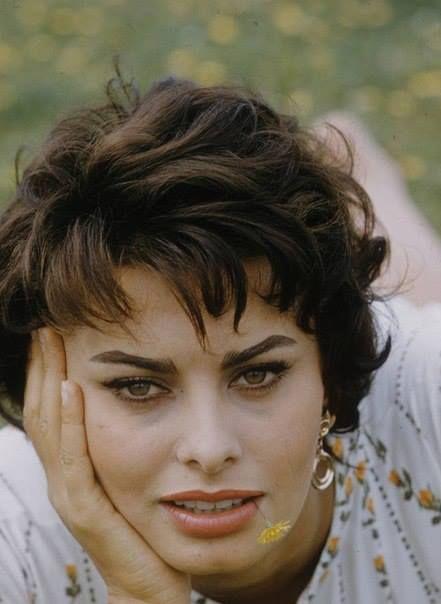 risultati immagini per sofia loren short hair - Sophia Loren Hair Color