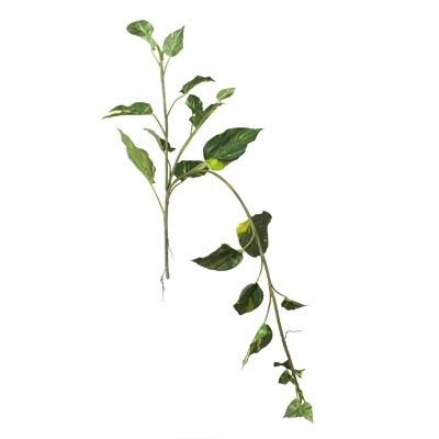 Leaf Vine Green - just a few sprigs