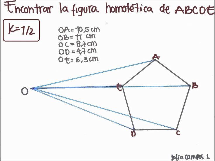 Explicación paso a paso acerca de las figuras homotéticas.