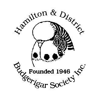 Hamilton & District Budgerigar Society Inc. #parrots #parrot #petbirds #companionparrot #birdclub