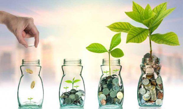 Cara Memilih Investasi Reksadana Terbaik Yang Ditujuan Bagi Pemula