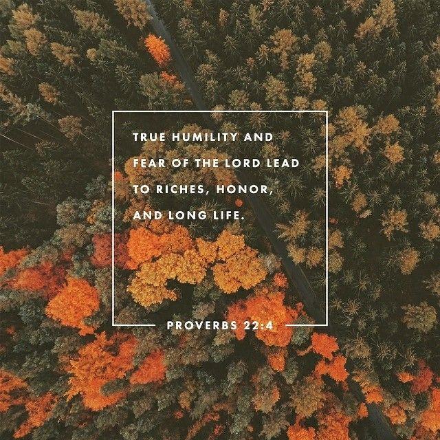 A recompensa da humildade e do temor do Senhor são a riqueza, a honra e a vida 📖🎯❤️