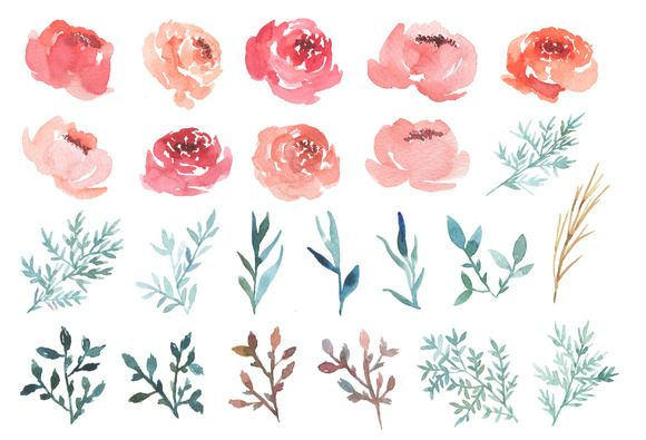 Lovely set of watercolor peony clip art!