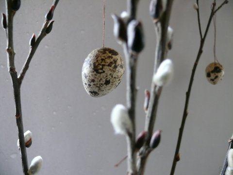 gkkreativ: Freitagsblumen