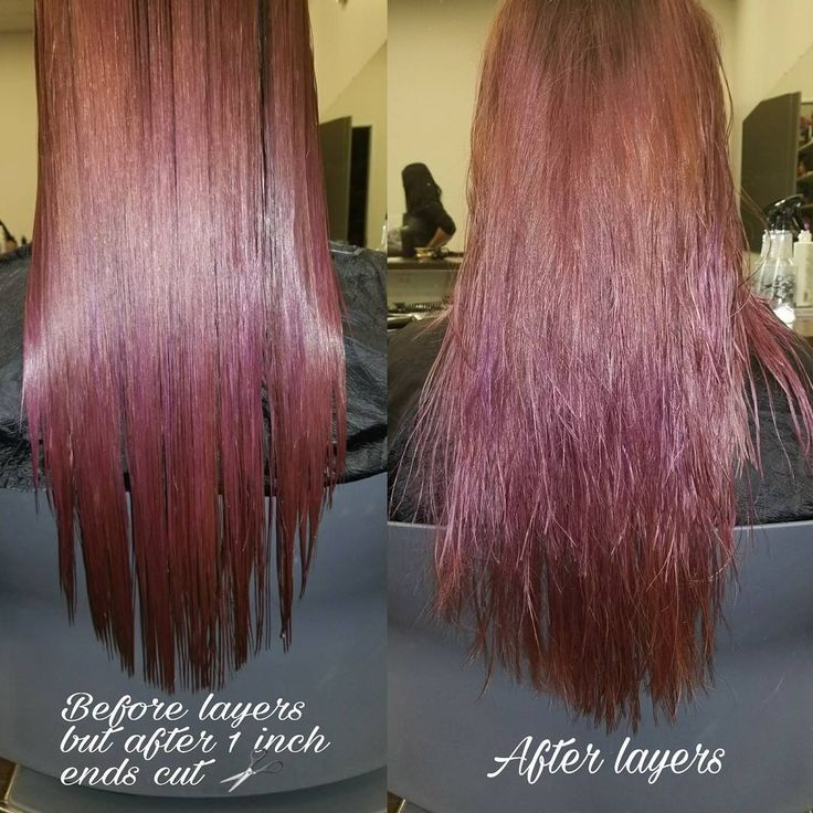 """Goodness this was a fun one! There cuts in one! Trimmed the ends off, corrected that """"v"""" shape she had in the back, added layers for fullness and made her bangs well... Bangs again! I hit the floor in 2 weeks! Who's going to book me? ;) #haircut #haircuts #hairstyles #messyhair #layers #layeredhair #purplehair #redhair #vcuthair #vcut #curlyhair #curledhair #cosmolife #cosmetology #hairschool http://tipsrazzi.com/ipost/1523738227964733492/?code=BUlZ9hghWg0"""
