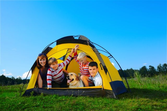 Dog-Friendly Camping Australia