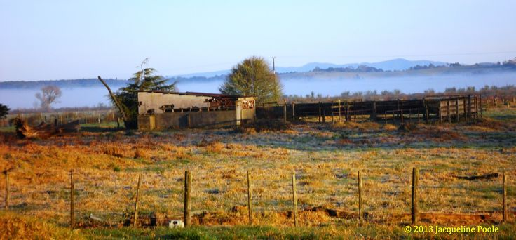 Old Cow shed, Omapere Lake, Okaihau, Northland, New Zealand